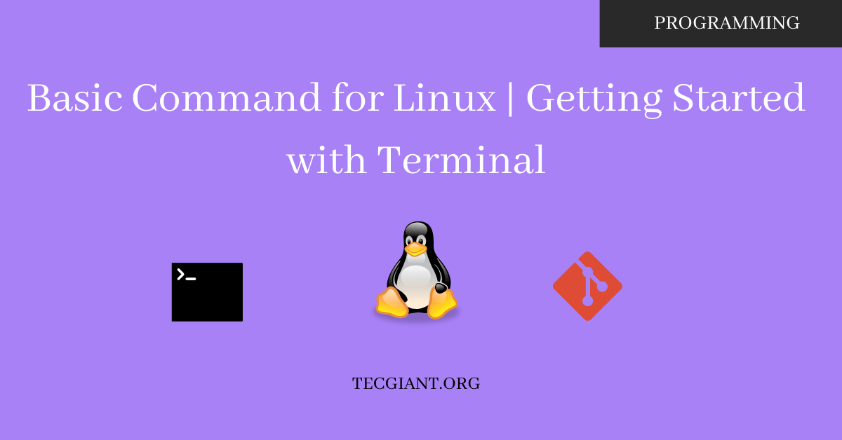 feature image of basic command for linux